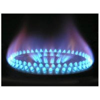 Gas Boilers Fault Finding Course