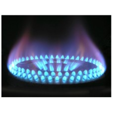 Gas Appliance Assessment (choose one appliace from Cookers/Fires/Meters)
